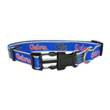 Florida Gators Reflective Collar